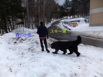 2977.jpg