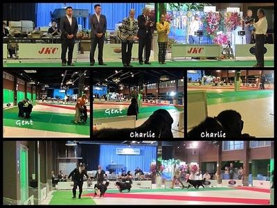 Collage_Fotor0908_Fotor.jpg