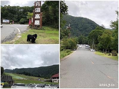 Collage_Fotor210911_Fotor.jpg