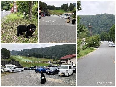 Collage_Fotor210912_Fotor.jpg