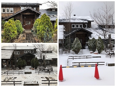 Collage_Fotor4月の雪_Fotor.jpg