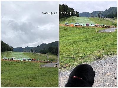 Collage_Fotorサマーゲレンデ_Fotor.jpg