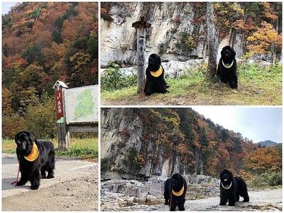 Collage_Fotor屏風岩_Fotor.jpg
