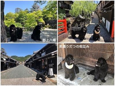 Collage_Fotor岐阜_Fotor.jpg