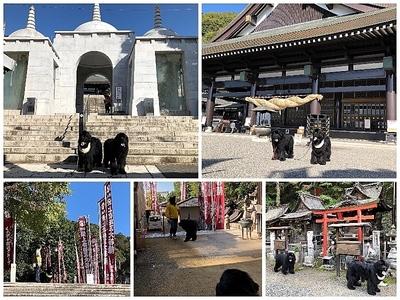 Collage_Fotor最上稲荷_Fotor.jpg