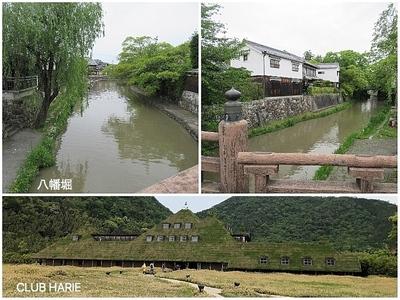 Collage_Fotor近江八幡クラブハリエ_Fotor.jpg
