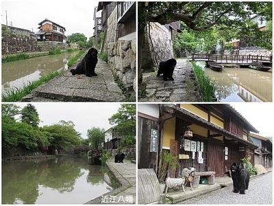 Collage_Fotor近江八幡_Fotor.jpg