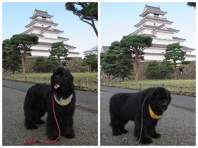 Collage_Fotor鶴ヶ城_Fotor.jpg