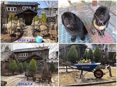 Collage_FotorSHW_Fotor.jpg