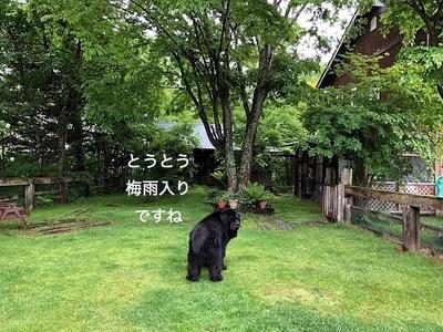 IMG_0382_Fotor.jpg