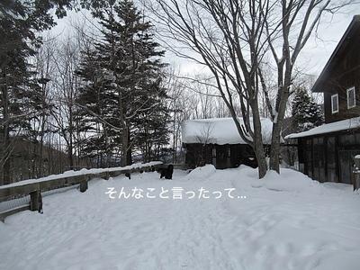 IMG_1823_Fotor.jpg