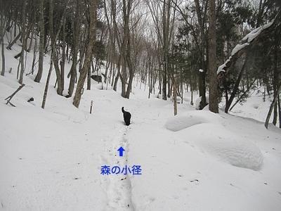 IMG_1869_Fotor.jpg