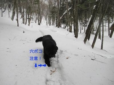 IMG_1870_Fotor.jpg