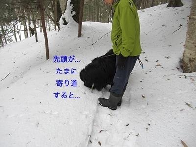 IMG_1871_Fotor.jpg