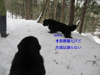 IMG_1875_Fotor.jpg