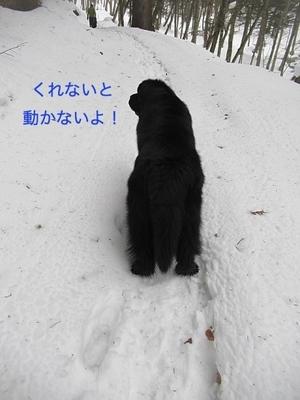IMG_1888_Fotor.jpg