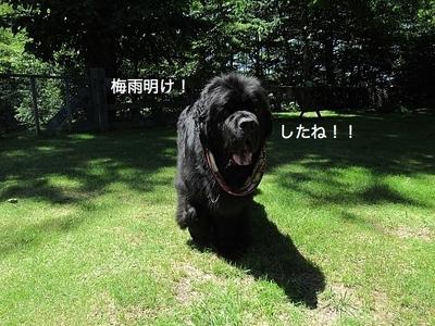 IMG_3206_Fotor.jpg