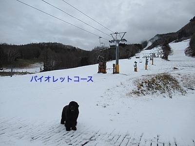 IMG_6709_Fotor.jpg