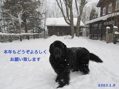 IMG_7689_Fotor_Fotor.jpg