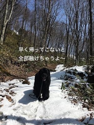 IMG_9934_Fotor.jpg